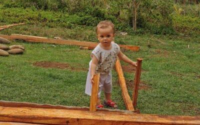 A little master builder