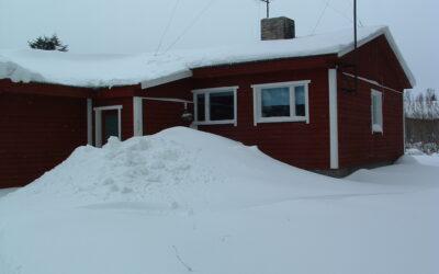 Lumi 2010