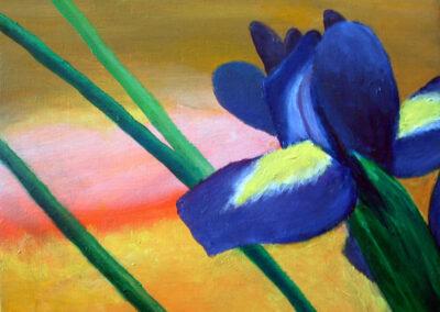 """Iris"" oil 2008 / 30x24 cm / sold for 200 €"