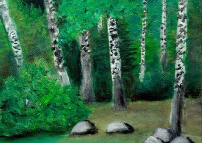 """""""Birch forest"""" oil 2006 / 18x24 cm"""