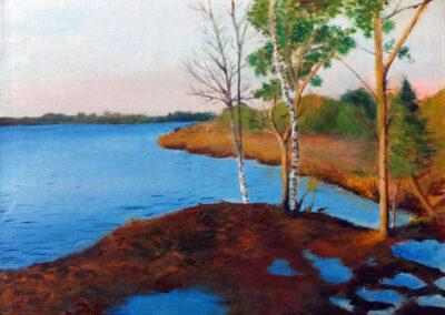 """Loosalu bog"" oil 2014 / 40x30 cm"