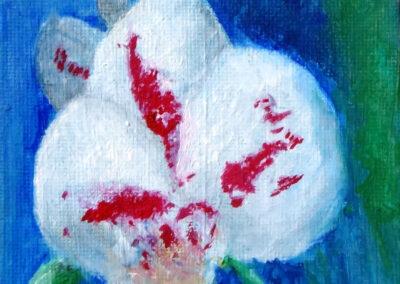 """Orchid"" oil 2016 / 10x15 cm"
