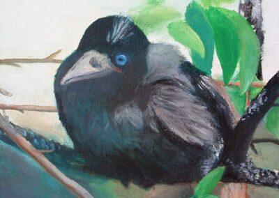 """The Crow"" oil 2008 / 27x27 cm"